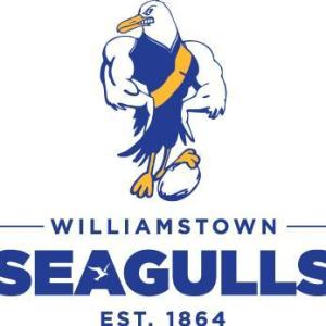 Seagulls logo